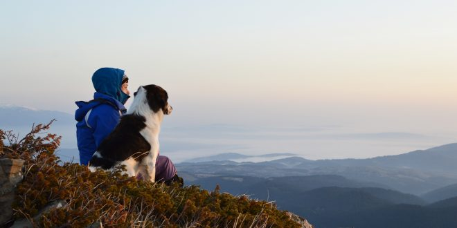 Ein Hund mit seinem Herrchen auf einem Berg